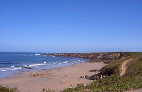Cogersa inicia el servicio de apoyo a la limpieza de 90 playas